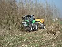 Cultures biomasse chambres d 39 agriculture de picardie - Chambre d agriculture de haute marne ...