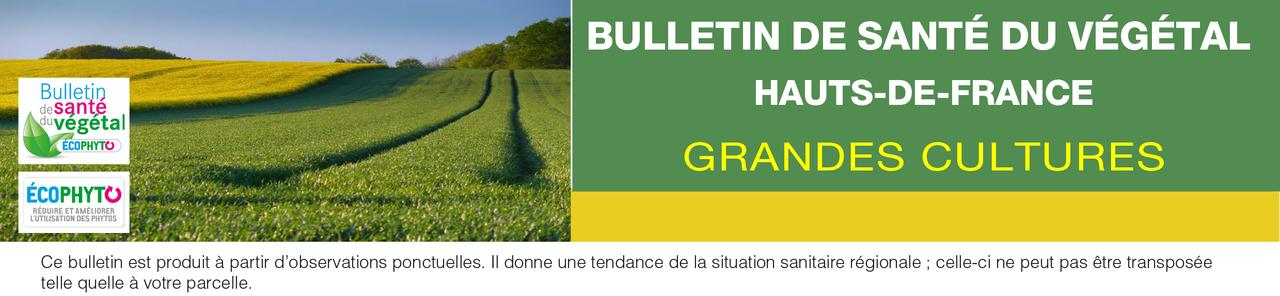 Bulletins de sant du v g tal chambres d 39 agriculture de picardie - Chambre d agriculture de picardie ...