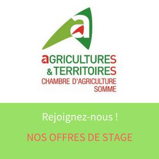 Les Offres De Stage De La Chambre Du0027agriculture De La Somme   Hauts De  France
