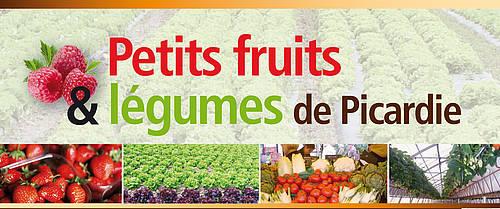 Petits fruits l gumes chambres d 39 agriculture de picardie - Chambre d agriculture de picardie ...