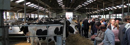 Eurodairy hauts de france chambres d 39 agriculture de picardie - Chambre d agriculture de picardie ...