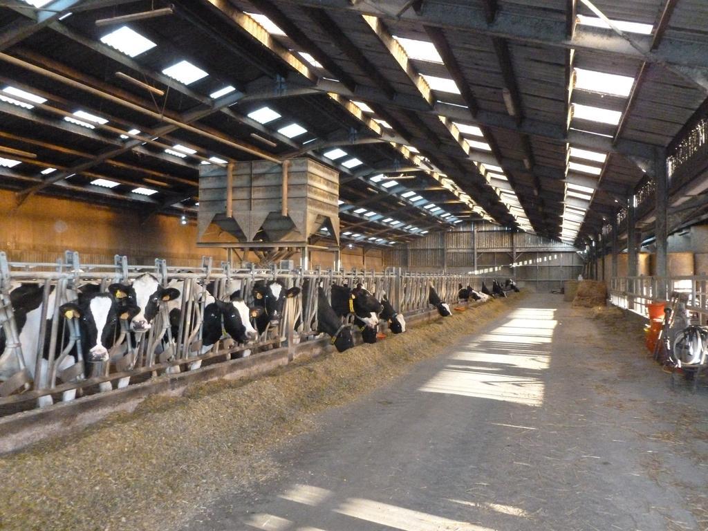 Logement des animaux chambres d 39 agriculture de picardie - Chambre d agriculture de picardie ...